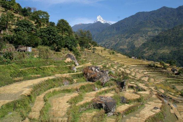 climate change nepal